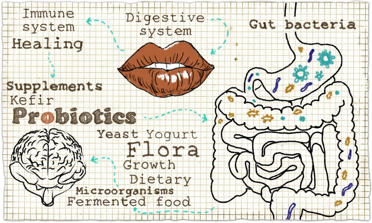 Why Your Digestive System can Fix Your Fatigue
